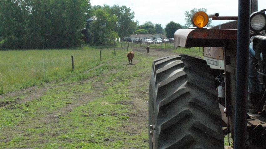 WBB Farm